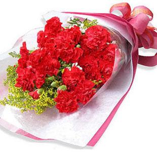 材料19支红色康乃馨,配黄莺(或水晶草) 包装深红色皱纹纸